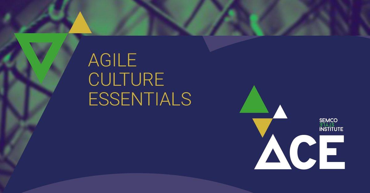 Ace Culture Essentials